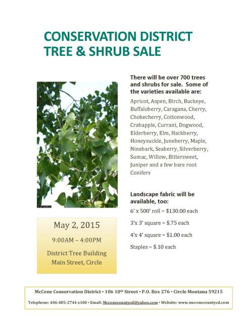 Tree Sale_Page_1
