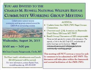 cmr cwg meeting