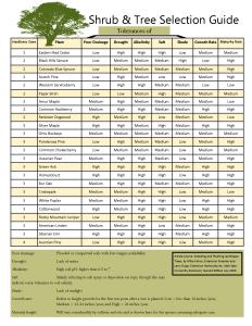 shrub-tree-selection-guide